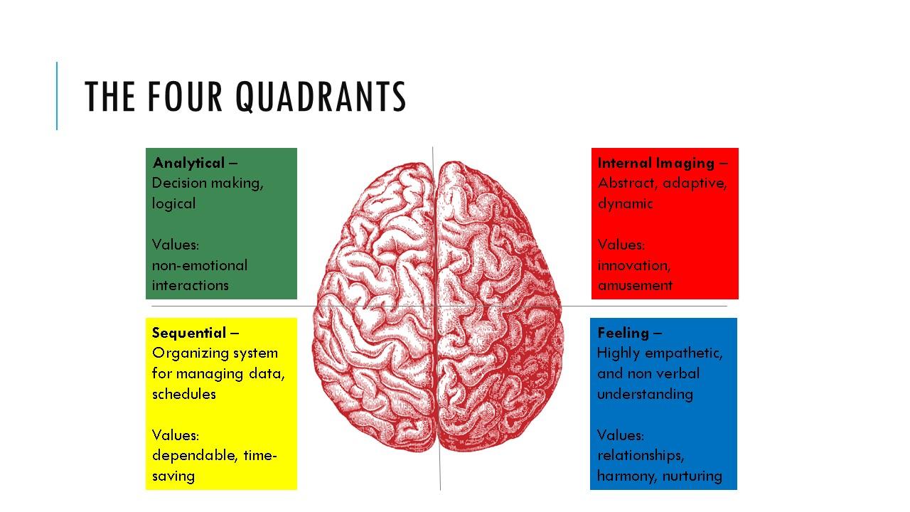 Cognitive preferences - Feb 2016_brain